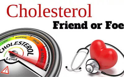 Cholesterol 101: It's The Cure Not The Cause
