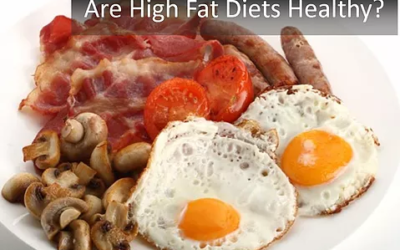 Are High Fat Diets Healthy?