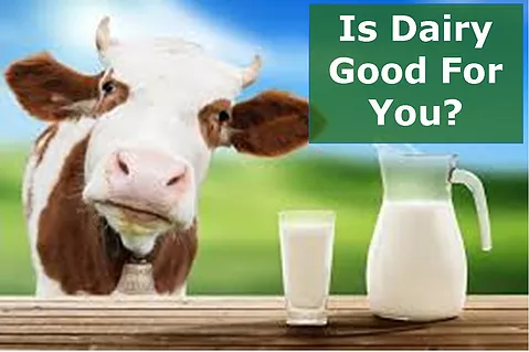 Is Dairy Good For You?