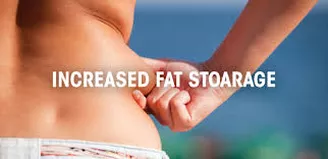 The Fat Storage Hormone