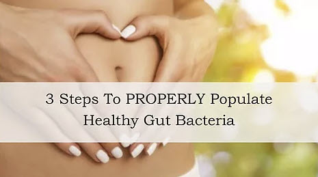 3 Steps To Properly Populate Healthy Gut Bacteria