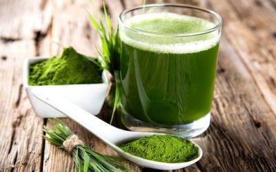 Which Is Better For You – Green Superfood Powder or Green Juice?